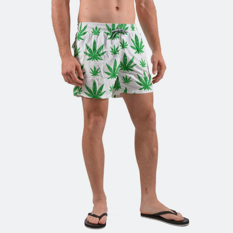 MC2 Swimwear Marijuana