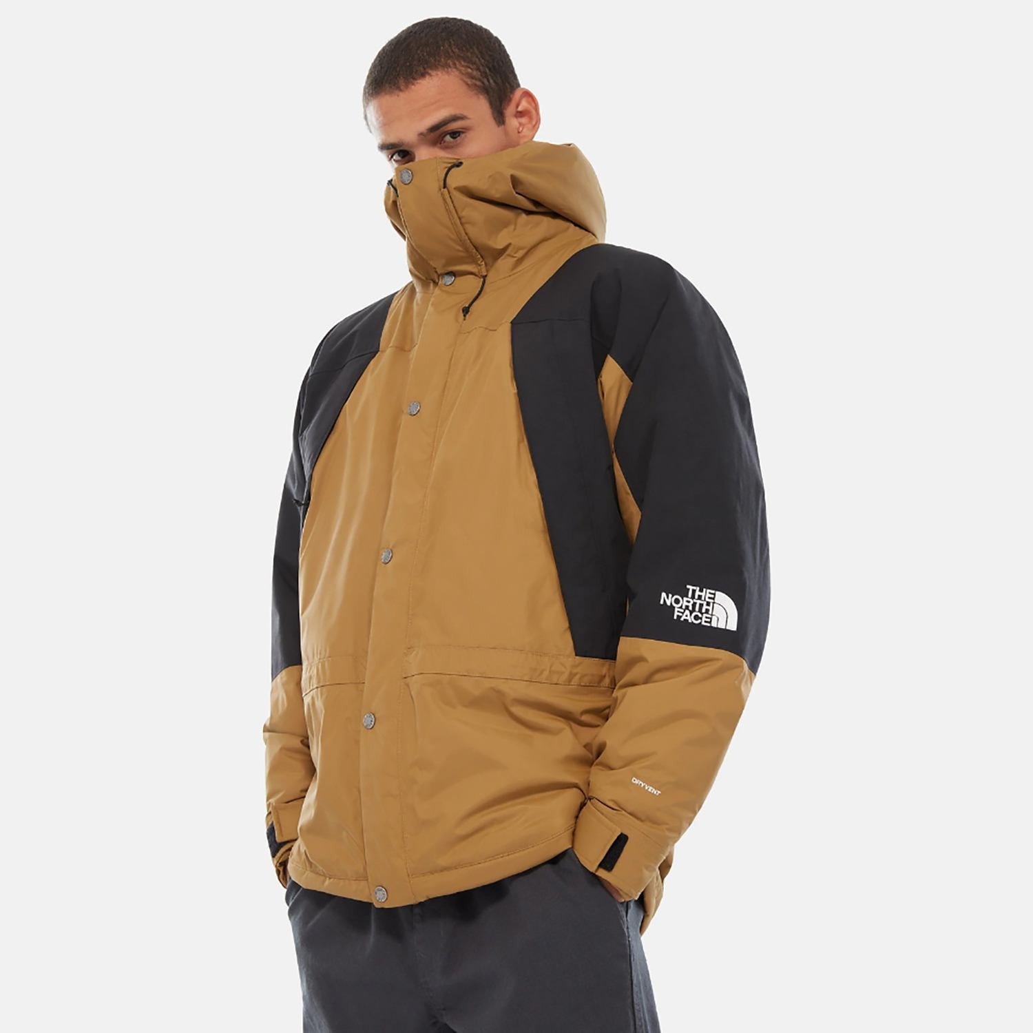 THE NORTH FACE Mountain Light Dryvent Insulated Jacket (9000036721_19279)
