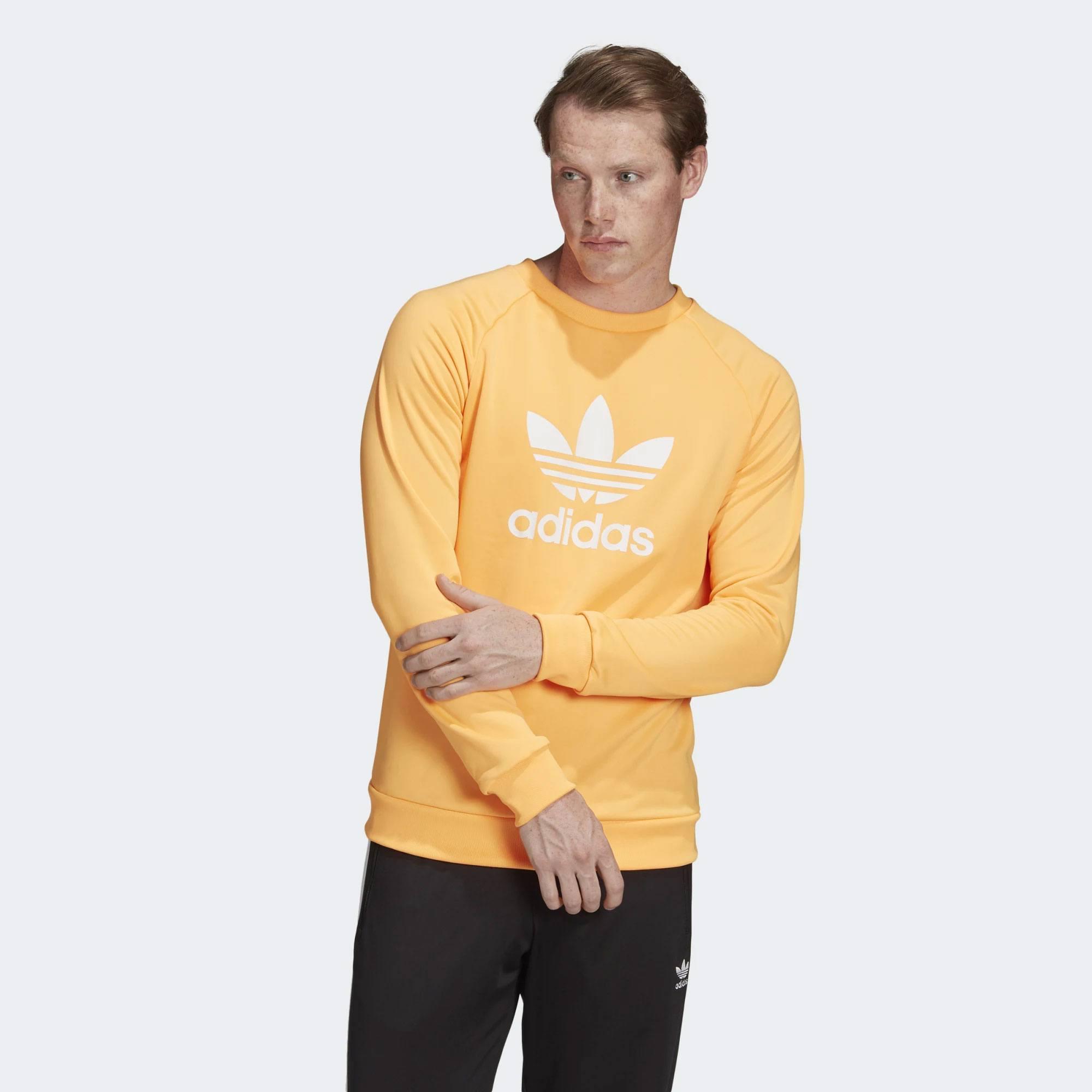 adidas Originals TREFOIL CREW (9000031908_39535)