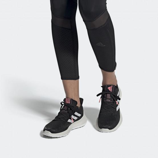 Παπούτσια Γυμναστικής