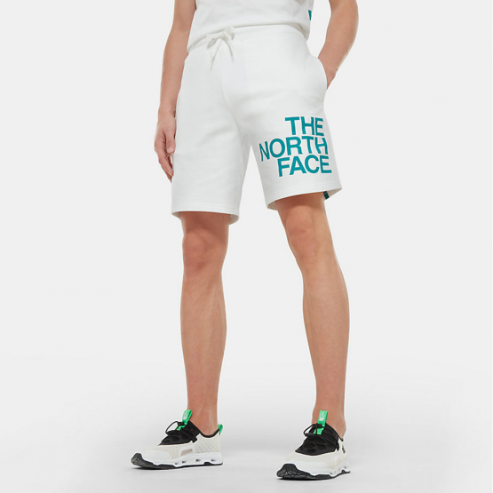 THE NORTH FACE M SS GRAPHIC SHORT TNF