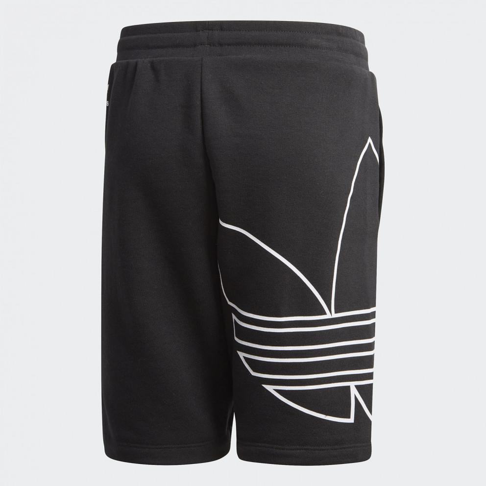 adidas Originals Big Trf Shorts