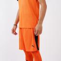 Puma x OFI Crete F.C. Liga Men's Shorts