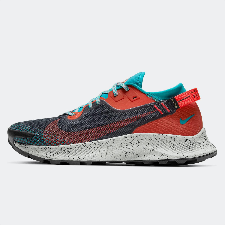 Nike Pegasus Trail 2 Gore-Tex Ανδρικά Παπούτσια για Trail (9000069622_50385)