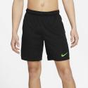Nike Dry-FIT 5.0 Men's Shorts