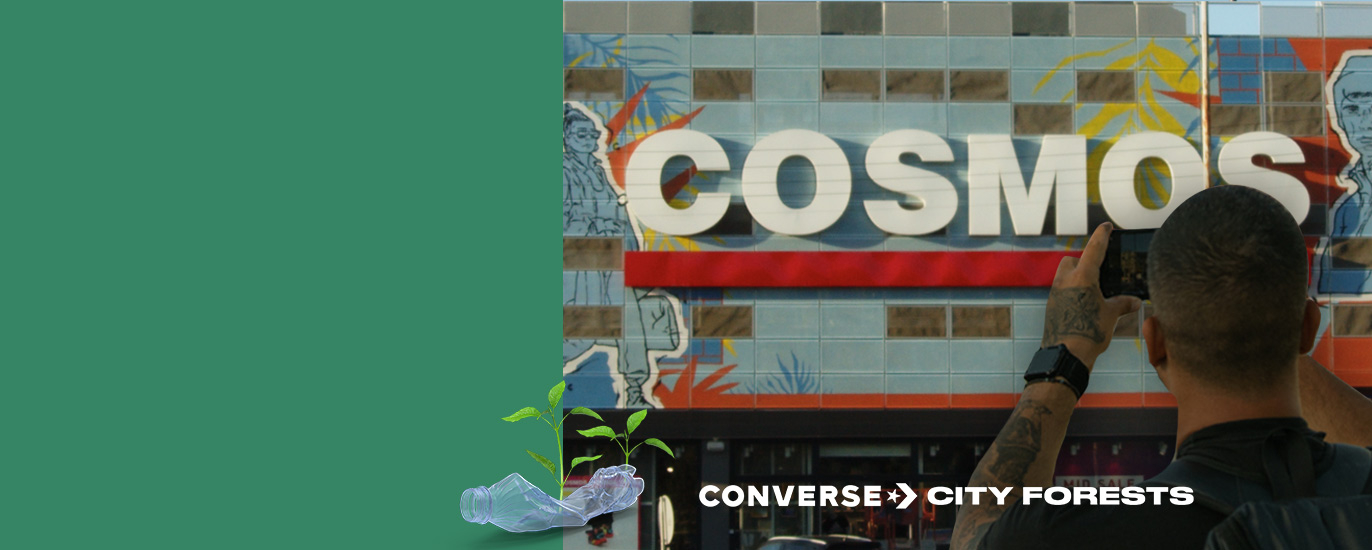 Converse City Forest